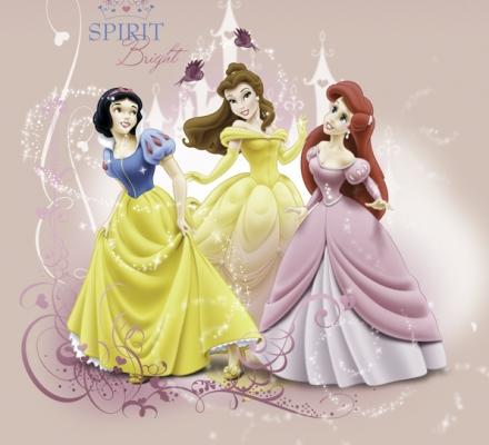 Изображение Плед флисовый «Принцессы и замок»